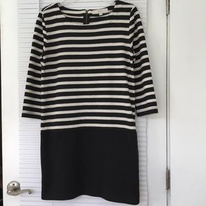 LOFT Size Medium Sweater Dress